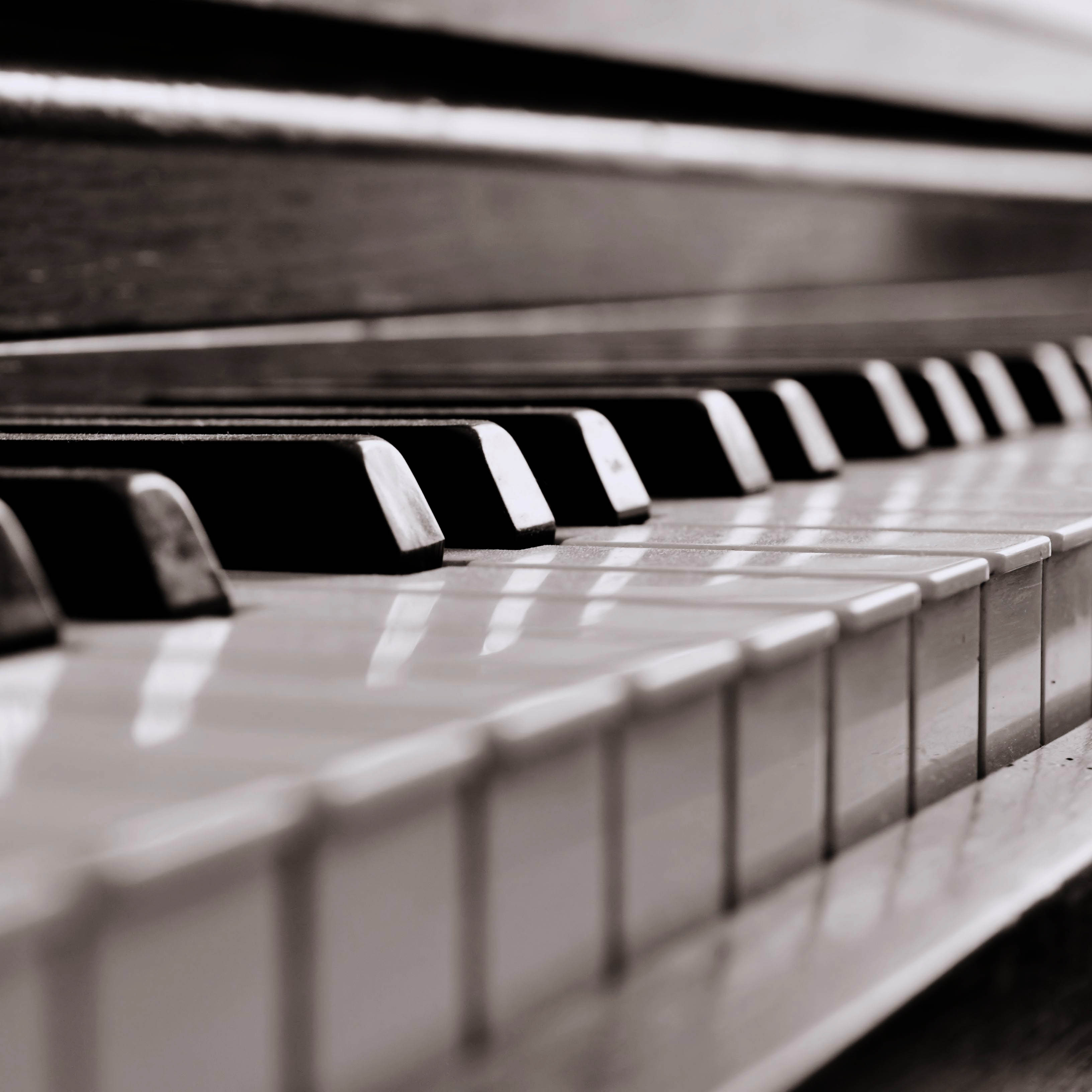 Piano Lessons in South Jersey