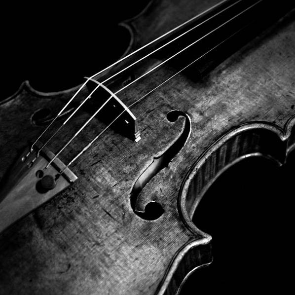 Violin Lessons in South Jersey
